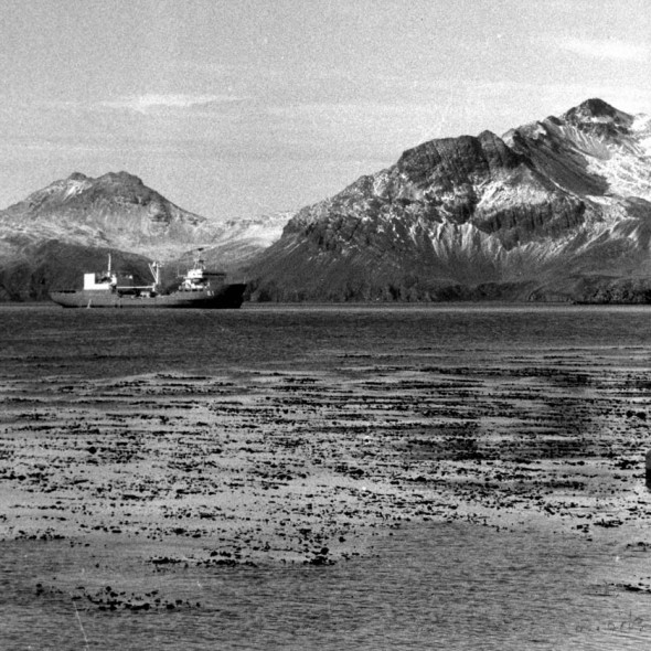 ARA, bahia paraiso, polar Transport, on South Georgia, 1982, photographed by Serge Briez, ©2014 Cap médiations