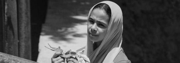 Egypt , intimate Arab Spring by Serge Briez, Cap médiations 2011