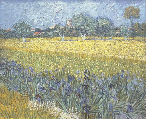 Vue d'Arles avec Iris , View of Arles with Irises, Van gogh's painting photographed by Serge Briez, ©2014 Serge Briez, Cap médiations