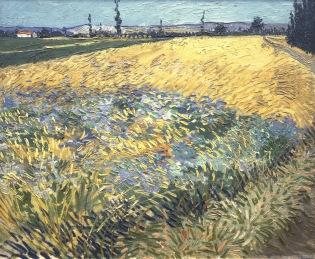 Wheat Field with the Alpilles Foothills in the Background, Champs de blé avec les Alpilles en arrière plan, Juin 1888, Van gogh's painting photographed by Serge Briez, ©2014 Cap médiations