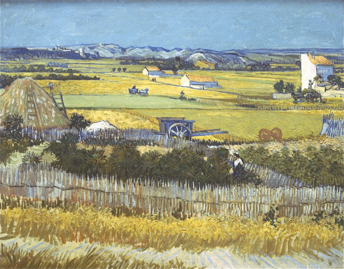 Plain of the Crau with ruin Montmajour,La plaine de la Crau avec la ruine de Montmajour, 1888, Van gogh's painting photographed by Serge Briez, ©2014 Cap médiations