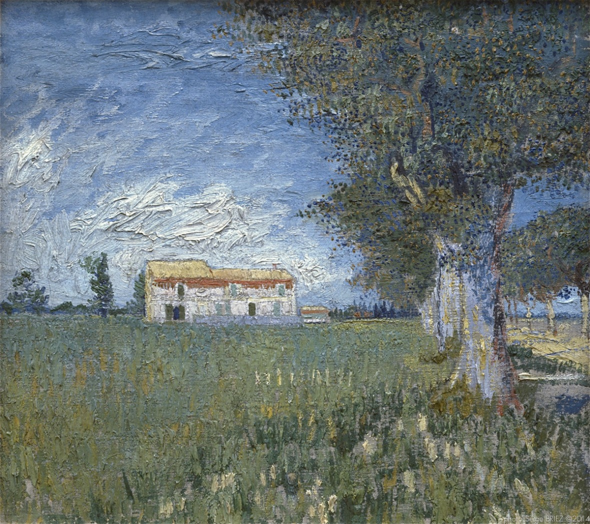 Farmhouse in a Wheat Field, Ferme dans les champs de blé, May 1888, Van gogh's painting photographed by Serge Briez, ©2014 Cap médiations