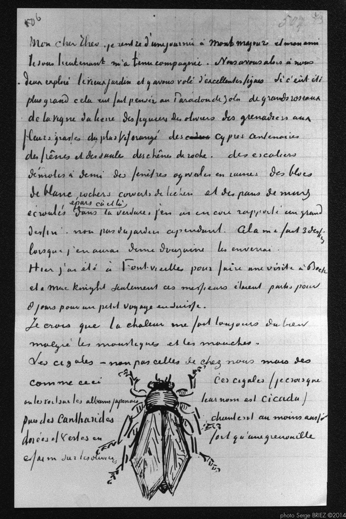 1800 van gogh in provence illustrated letter from vincent