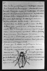 Illustrated letter from Vincent Van Gogh to his brother Theo (5 August 1882), Lettre illustrée de Vincent Van Gogh à son frère, Theo (le 5 août 1882) photographed by Serge Briez, ©2014 Cap médiations