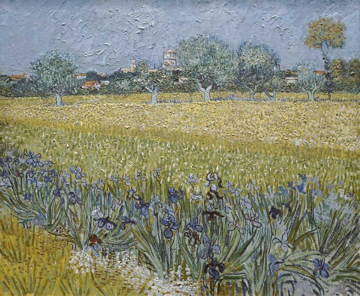 Vue d'Arles avec Iris , View of Arles with Irises, Van gogh's painting photographed by Serge Briez, ©Serge Briez, Cap médiations